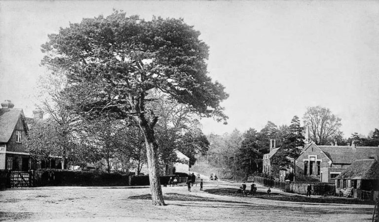Flitwick, Bedfordshire Family History Guide