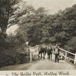 The Bridle Path HADLEY WOOD LONDON